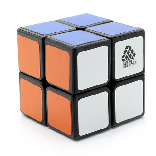 WitTwo great 2x2 speed cube 2016