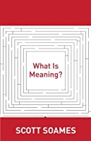 What Is Meaning?