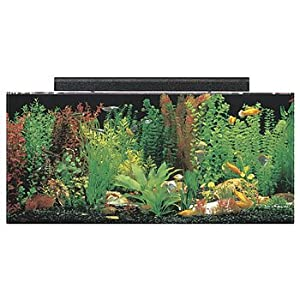 Seaclear rectangular aquarium combo clear for Fish tank and stand combo