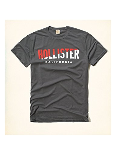 hollister-hco-logo-mens-graphic-t-shirt-tee-m-gray-33-tee