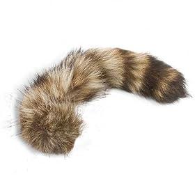 Raccoon Tail