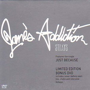 Strays [CD + DVD]