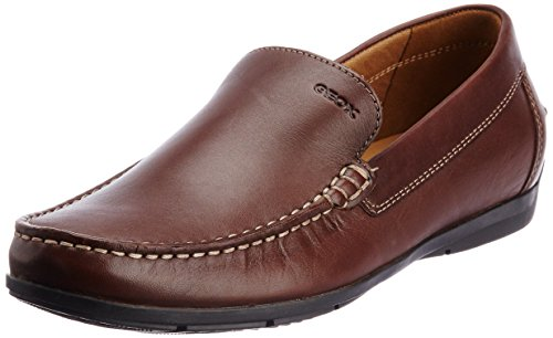 Geox Geox Men's Leather Formal Shoes (Multicolor)