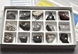 SciEd Igneous Rock Collection; 1/pk
