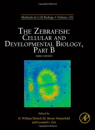 The Zebrafish: Cellular And Developmental Biology, Part B, Volume 101, Third Edition (Methods In Cell Biology)