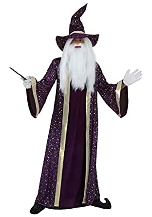 Adult Purple Wizard Costume