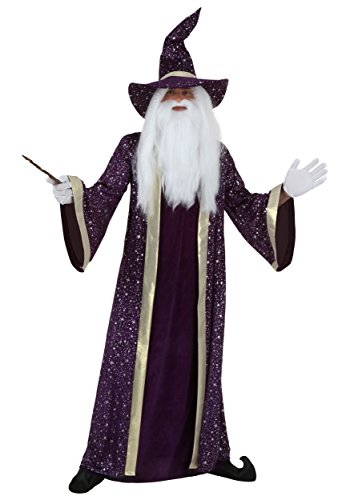 Adult Purple Wizard Costume Medium