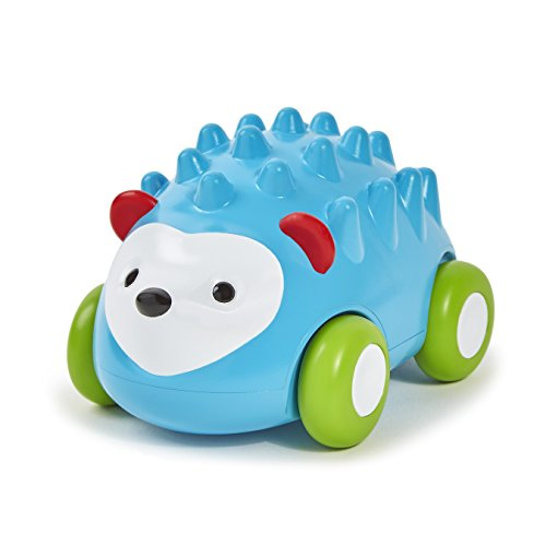 Skip-Hop-Baby-Explore-and-More-Developmental-Pull-and-Go-Push-Toy-Multi-Hedgehog