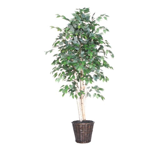 Vickerman AZTEX3460 Paper Birch Artificial Plant, 6-Feet