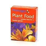 Phostrogen Plant Food 250Gm