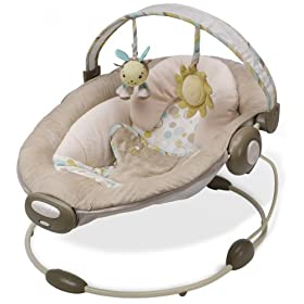 Boppy Bounce in Comfort Bouncer