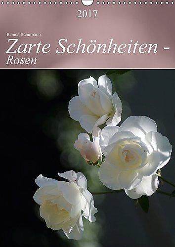 zarte-schonheiten-rosen-wandkalender-2017-din-a3-hoch-edle-koniginnen-der-blumen-in-ganzer-blutenpra