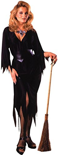Bewitching Witch Costume (Adult Regular Size) (Sexy)