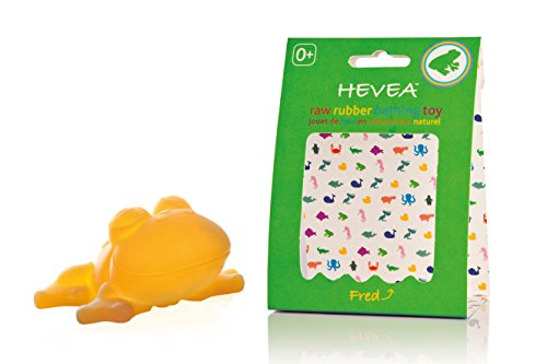Hevea Bath Toy, Fred The Frog - 1