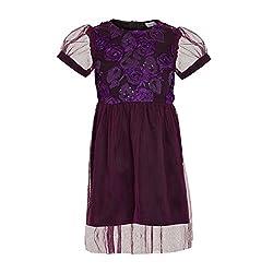 Purple Rose Dress(BBKPD10_Purple_6 to 7 years)