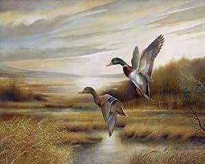 Amazon.com: 2 Duck Wild Geese Water Fowl Western Hunting Art Prints