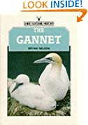 The Gannet (Shire natural history)