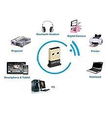 iAnder USB Bluetooth 4.0 Adapter Dongle Mini Bluetooth 4.0 Adapter Dongle With CSR8510 Controller and CSR Harmony for Windows XP Vista Win 7 Win 8