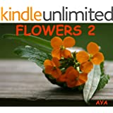Children's Book: Flowers 2 (Amazing Pictures Of Flowers For Kids)(Beginner Readers eBook Series for age 2-6)