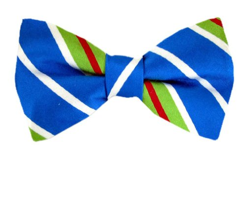 Pbt-Tom-104 - Blue - Green - Fuchsia -Tommy Hilfiger Pre - Tied Bowtie