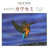 水辺の宝石 カワセミ木島宏写真集 (NC PHOTO BOOKS)