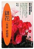 鉢花―一年草・宿根草 (NHK趣味の園芸 新版・園芸相談)