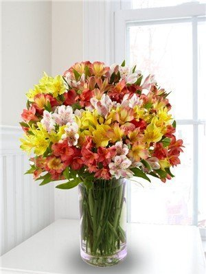 alstromeria-peruvian-lilies-100-blooms-with-a-free-vase-by-n-a