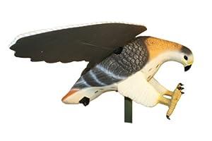 Mojo Outdoors Hawk Decoy by MOJO Outdoors