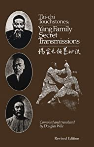 Tai Chi Touchstones: Yang Family Secret Transmissions [Paperback] — by Douglas Wile