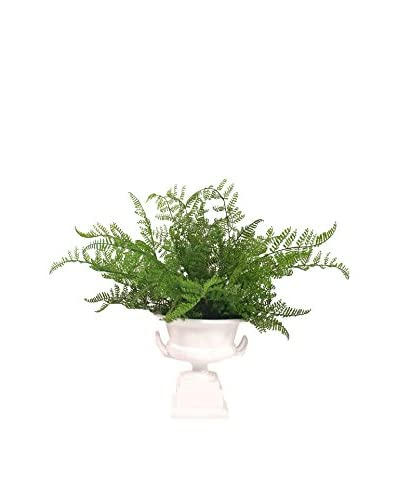 Creative Displays Fern Pedestal Planter, Green/White