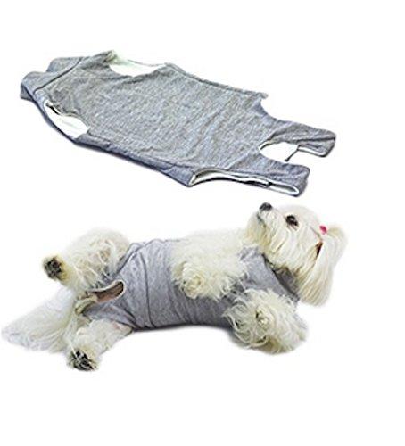 Fashion Dog - Cura Pets Body Copri Medicazione 43 cm