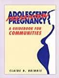 Adolescent Pregnancy Prevention: A Guidebook for Communities