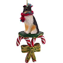 Sheltie Shetland Sheepdog Tri Color Dog Candy Cane Christmas Holiday Ornament