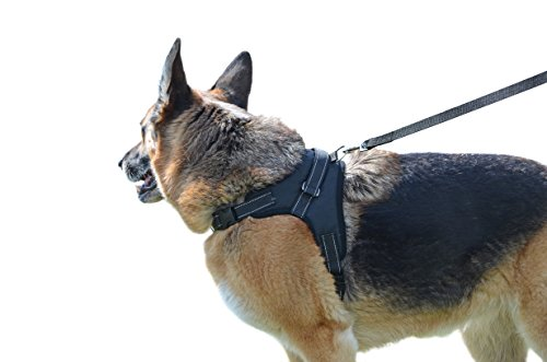 Catyou Durable Pet Dog Car Safety Harness Nylon Seat Belt
