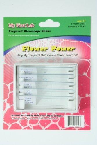 Microscope Prepared Slide Set - Flower Power (5 Slides)