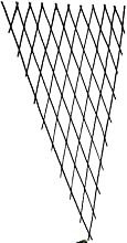 Master Garden Products Willow Expandable Fan Trellis 12 by 60-Inch