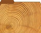 Wood Spiral Designer File Folders
