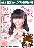 【込山榛香】ラブラドール・レトリバー AKB48 37thシングル選抜総選挙 劇場盤限定ポスター風生写真 AKB48チーム4
