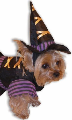 Forum Novelties 64861 Pet Witch Costume Large  For Dogs & Cats Picture