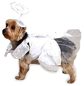 Casual Canine Angel Paws Dog Costume, Small, White