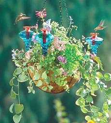Cheap Hanging Basket Hummer Feeder (B000FN6ZQA)