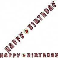 Lively Ladybug Happy Birthday Jointed Banner