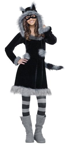 Fun World Sweet Raccoon Teen Costume, Black,Junior (0/9)