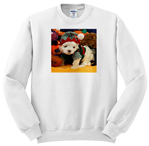 ss_201595 DOGS - MALTESE - SANTA'S LITTLE HELPER - WHITE MALTESE PUPPY IN GREEN AND RED ELF SUIT - Sweatshirts