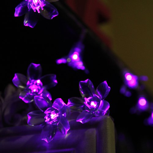 Innoo Tech 4M 40 LED Fairy string light Battery operated blossom styled for Christmas, Partys, Wedding, New Year Decorations, etc(Purple)