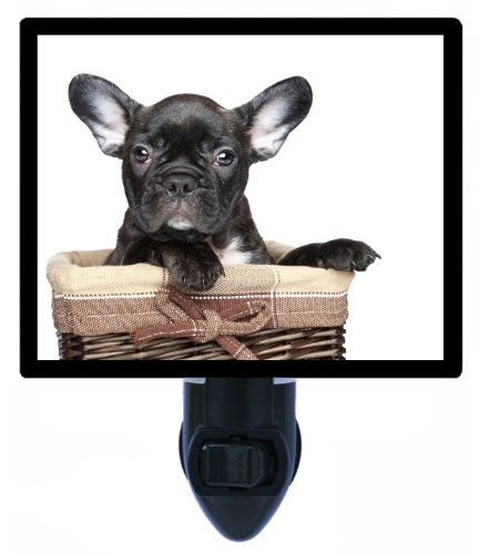 Dog Night Light - Black French Bulldog (Bulldog Night Light compare prices)