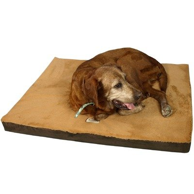 Armarkat Memory Foam Orthopedic Pet Bed Pad in Sage Green and Gray, 24-Inch by 18-Inch by 2-Inch