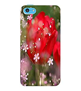 ColourCraft Love Flowers Design Back Case Cover for APPLE IPHONE 5C