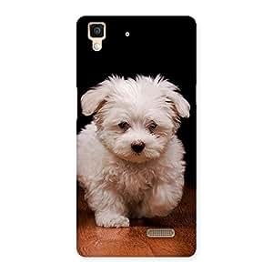 Premium Cute Walking Dog Back Case Cover for Oppo R7