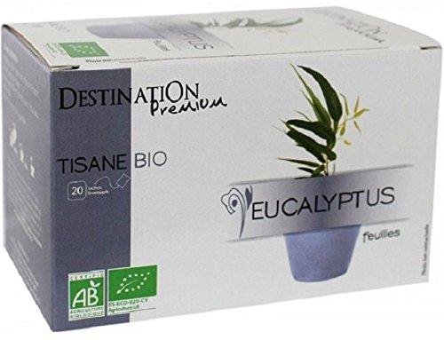Destination Bio - Infusion Plante Eucalyptus Bio - 20 X...
